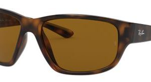 Ray-Ban RB4300 Glass Sunglasses